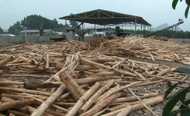 Xưởng gỗ công nghiệp - Nơi tạo nên những sản phẩm nội thất đẹp, chất lượng